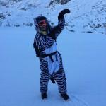 Zebra - Lucy Crozier